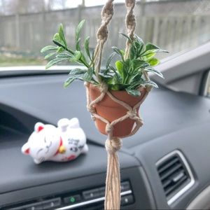 Car Hanging Plant for Rearview Mirror